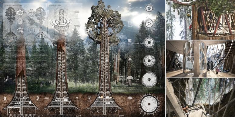Árbol Rascacielo-001