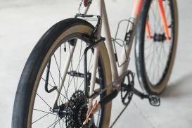 Fern Chuck Bike-005