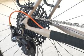 Fern Chuck Bike-007