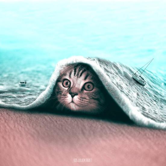 Los animales fantásticos de Julien Tabet-000