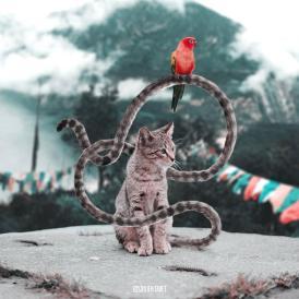 Los animales fantásticos de Julien Tabet-004