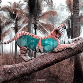 Los animales fantásticos de Julien Tabet-014