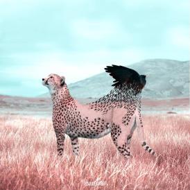 Los animales fantásticos de Julien Tabet-015