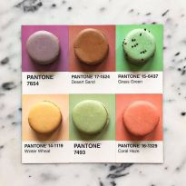 food-pantone-swatches-lucy-litman-17
